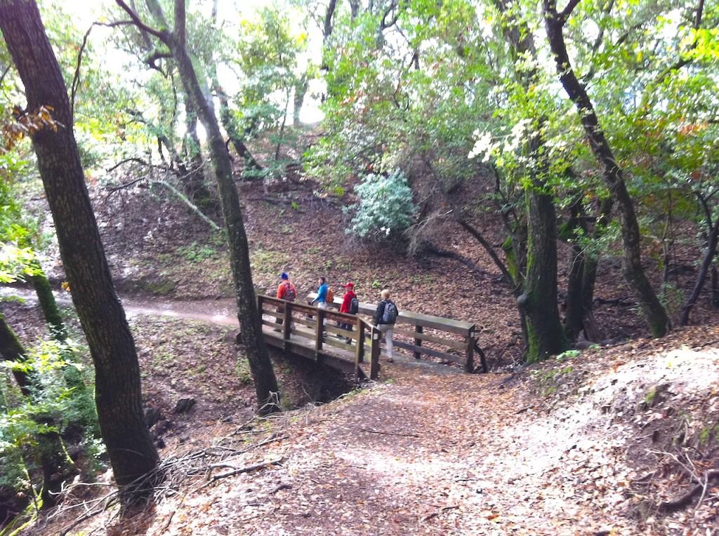 Hikers on bridge Miriam Nuney IMG_2235