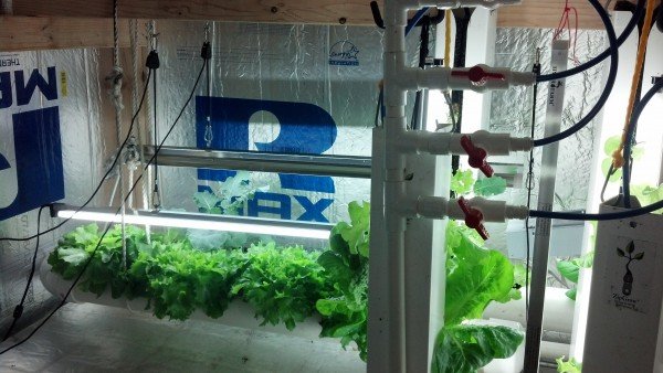 Ted Zimmerman's Aquaponics Grow Pod equipment