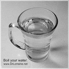 Boil your water. www.DrLorraine.net
